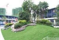 龙光城精装三房全明户型走500米到深圳随时看房