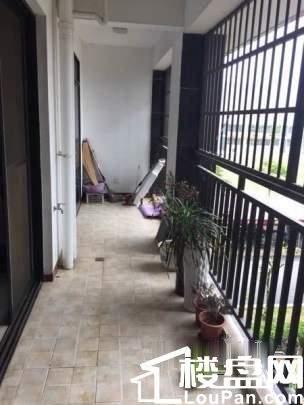 广东南路 万达商圈 海悦华府 精装五房 诚意出售
