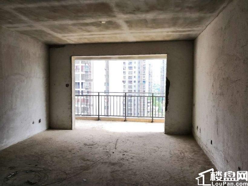 今日主推 树鑫城市花园 大气3房 南北通透 经典楼层