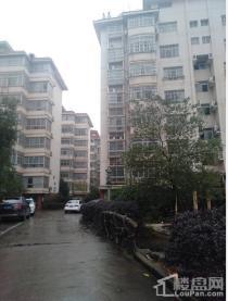 城南 桂花城 4千单价带精装3房 4楼