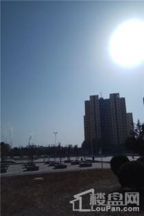 金川科技园