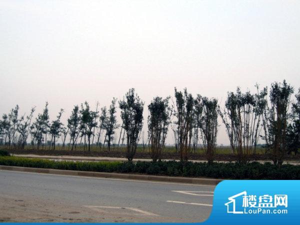 中惠团泊湾
