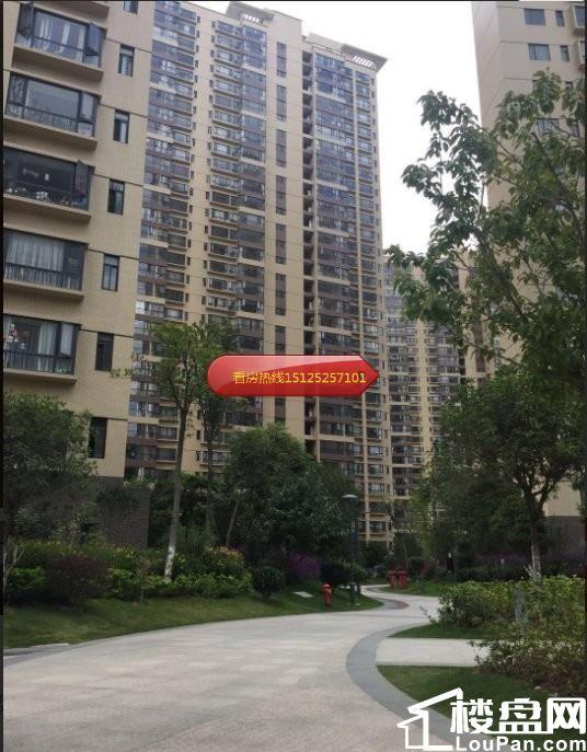惠丰瑞城11栋负一经典车位出售,