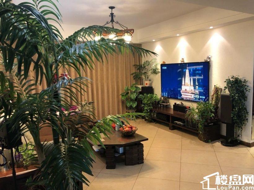 绿城玉兰公寓全景观、户型大气合理,上手房,诚心出售