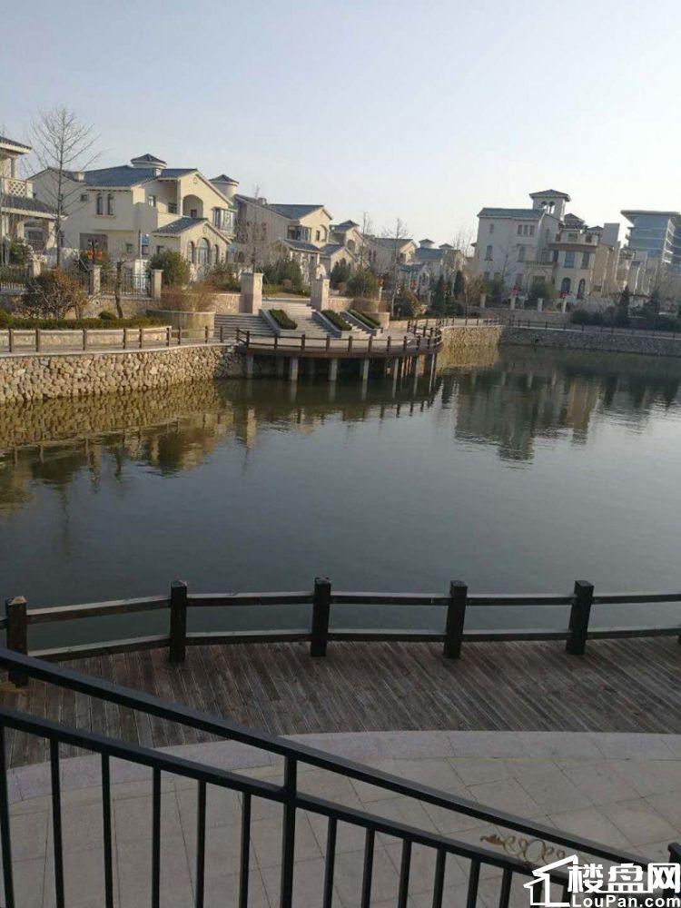 海邑长滩,一室一厅,海景房,开窗户就能看到大海,超大阳台