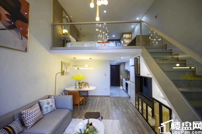 石药健康城平层公寓和公寓总房款20到30万之间