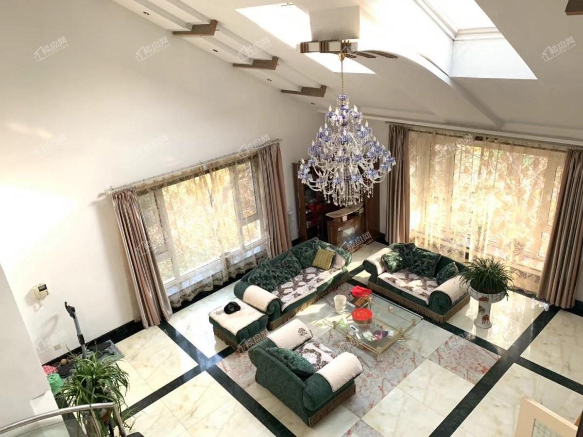 不限购浑南世纪大厦亚泰国际园区中心独栋双车库花园600多平