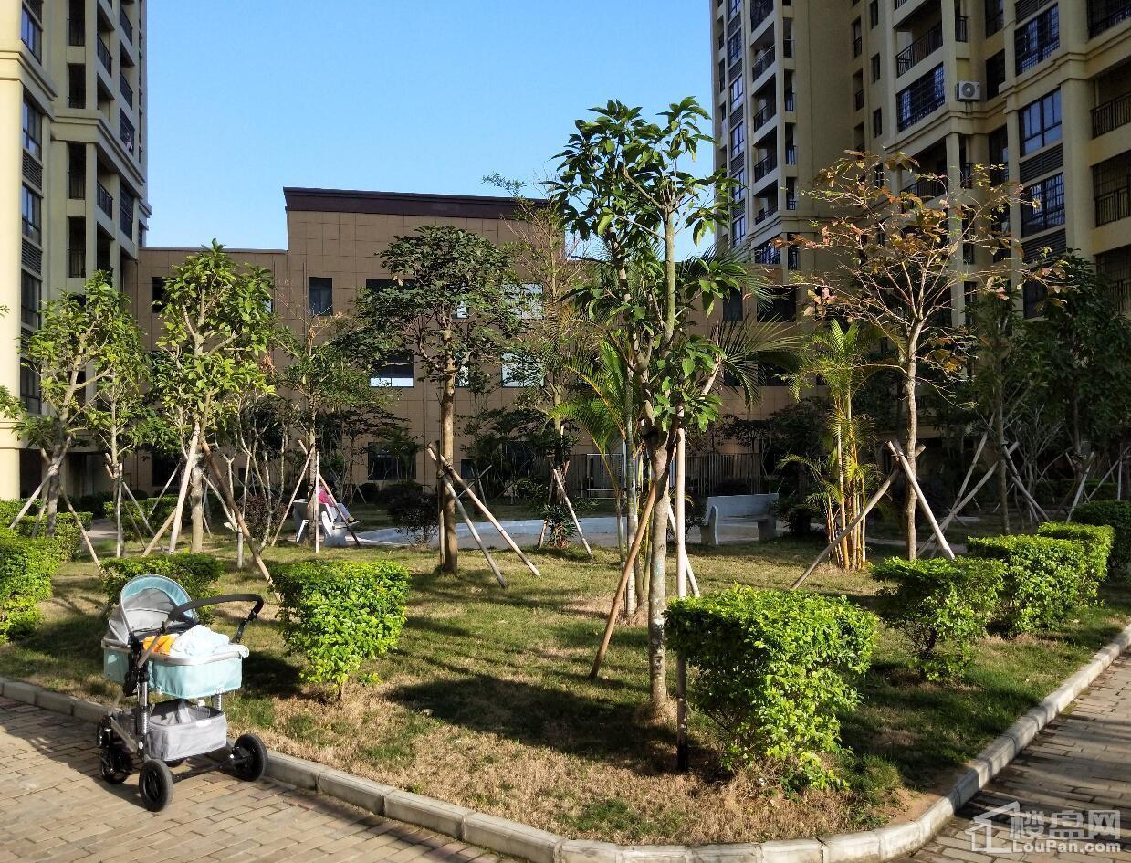 尚源花园实景图