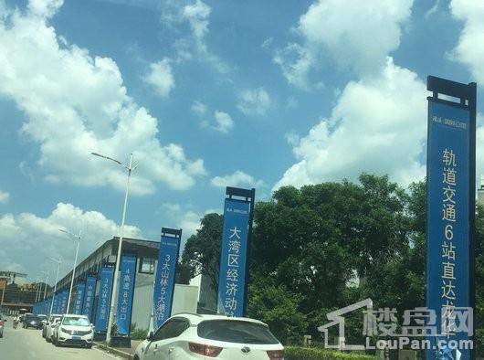 清溪国际公馆实景图
