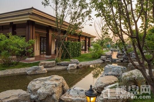 温泉新都孔雀城实景图