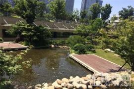 绿地新里·铭庐公馆