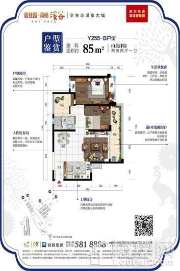 碧桂园·润杨溪谷户型图