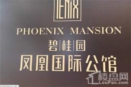 碧桂园·凤凰国际公馆项目