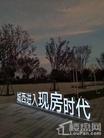 金輝悠步臨湖實景圖