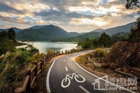 碧桂园森林湖实景图