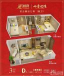 中澳滨河湾复式公寓户型图D