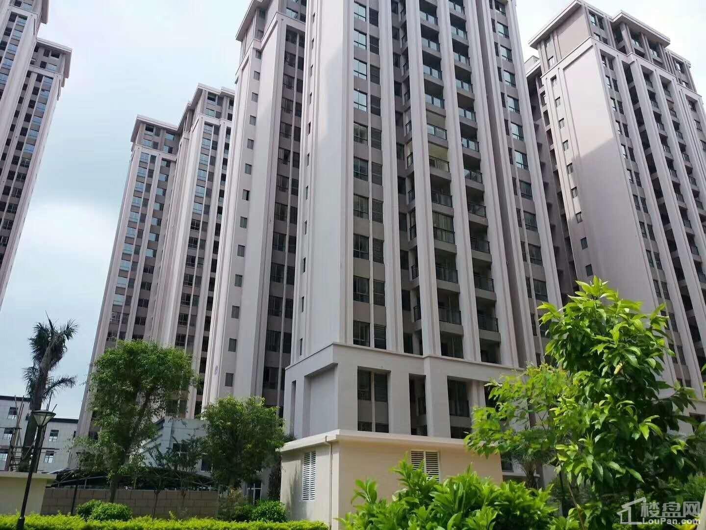 东峰世纪公寓实景图