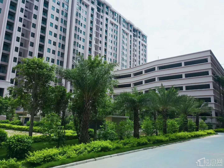 东峰国际公寓 实景图