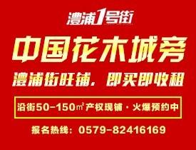 金华茂新四季枫景高清图