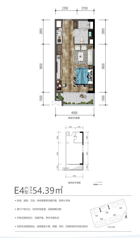 E4户型 1房 54.39平