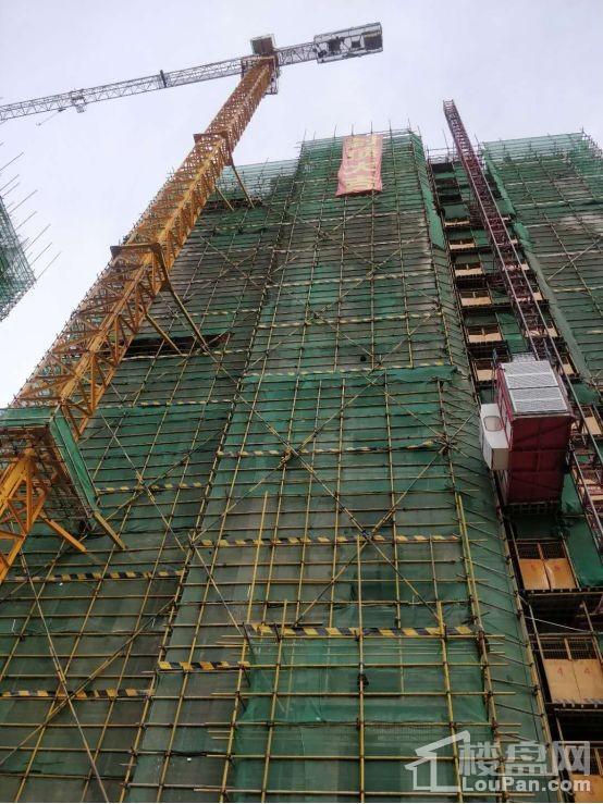 碧桂园北海印象施工图5#楼