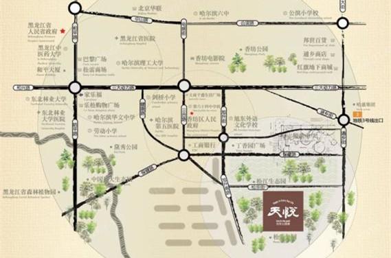 哈尔滨天悦商铺位置图