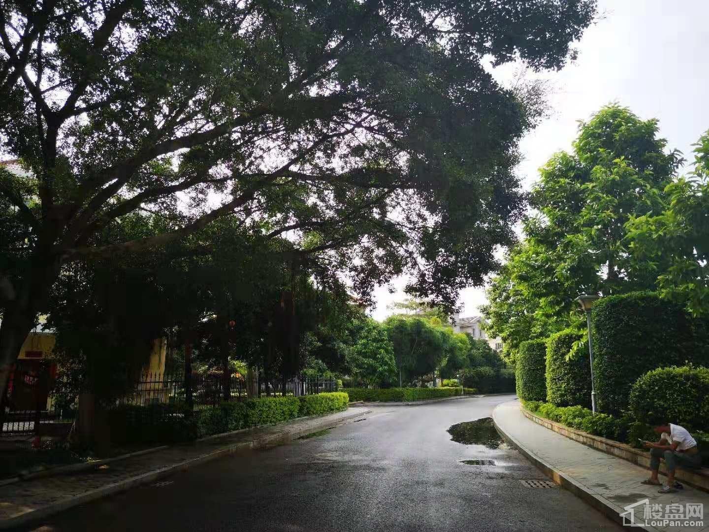 海枫和苑实景图