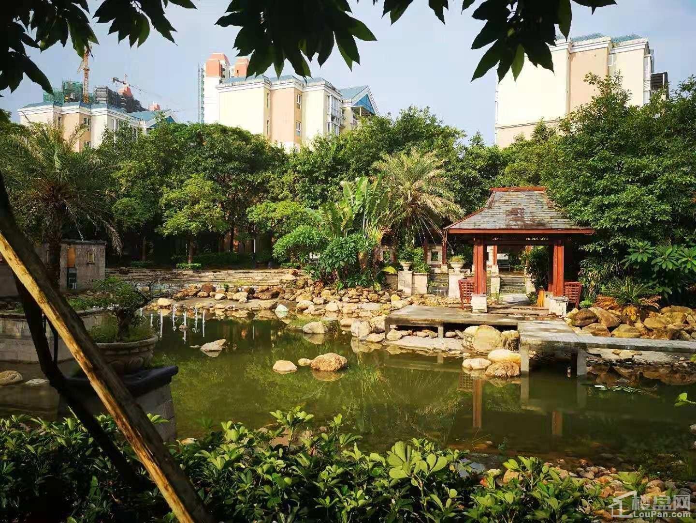 海枫和苑 实景图