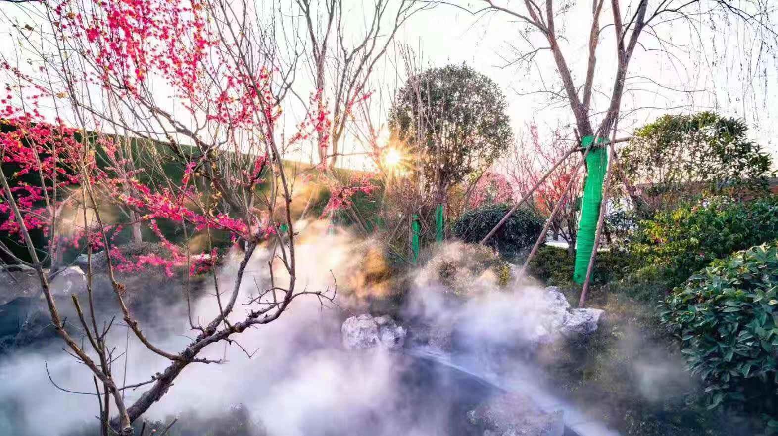 蓝光-雍锦半岛实景图