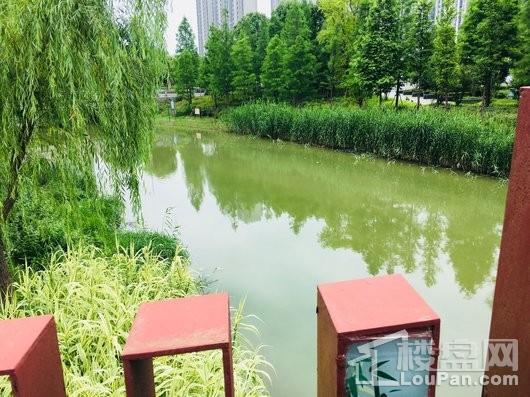 连飞虹湖天地配套图