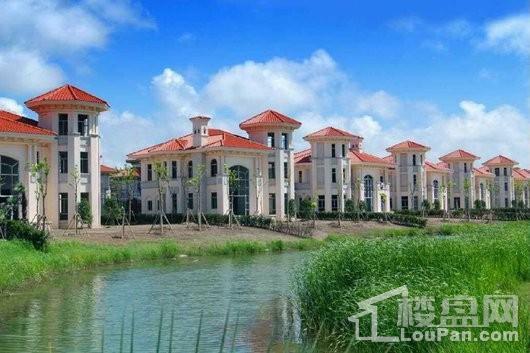 为您推荐棕榈滩高尔夫别墅