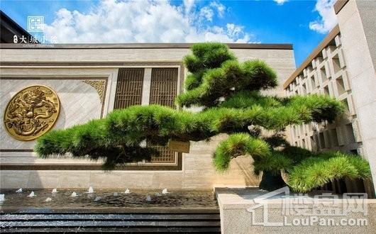 泰禾大城小院实景图