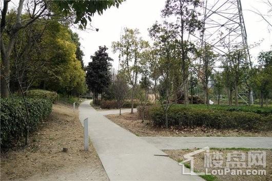 大华斐勒公园大华北公园(向东约500米)