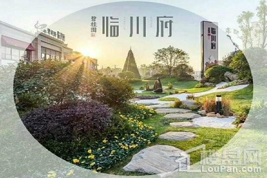 碧桂园·临川府