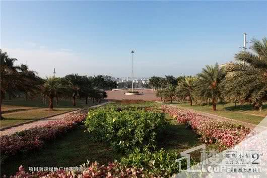椰岛小城周边 项目南端绿地广场实景图