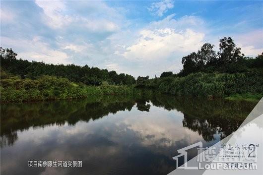 椰岛小城周边 项目南侧原生河道实景图