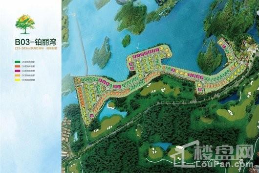 富力红树湾铂丽湾鸟瞰图
