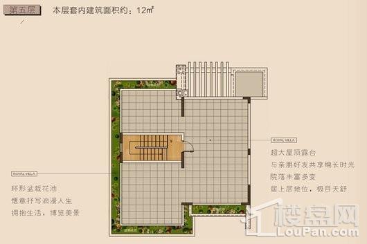 长弘·御墅E户型第五层 4室3厅4卫1厨