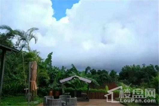 海南中基美域园林景观