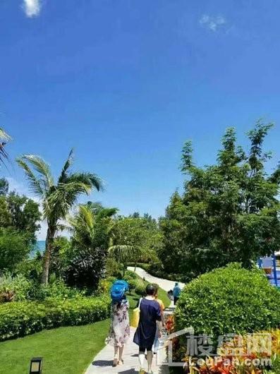 荣盛·香水湾小区景观