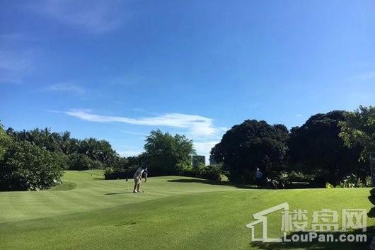 观澜湖·中央公园区周边 观澜湖高尔夫球场