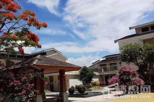 博鳌亚洲风情广场S4-S5休闲街区