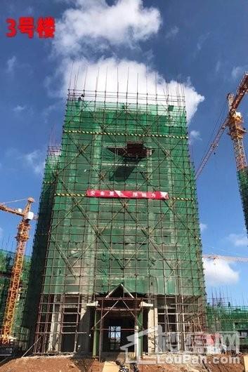 毗海澜湾3号楼工程进度