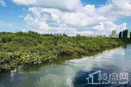 恒大御海天下周边配套-湿地公园