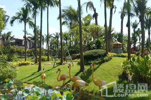 碧桂园椰城小区园林