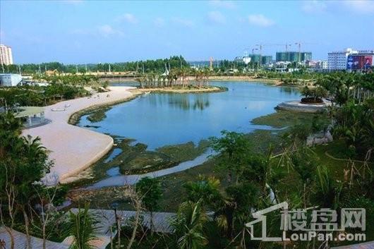 国祯·棕榈岛小区景观