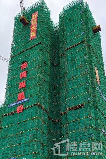 为您推荐徐闻凤凰谷