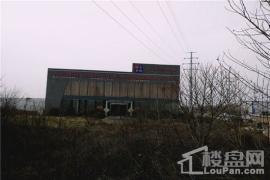 山东钢联电子商务钢铁物流园