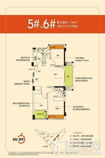 滨海·橙里户型图