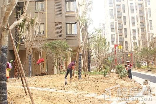 晋江紫峰里修缮园林实拍图